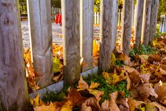 Ξύλινη παιδική χαρά πυλών που καλύπτεται στα φύλλα πορτοκαλί κίτρινο Autum Στοκ φωτογραφία με δικαίωμα ελεύθερης χρήσης