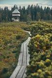 Ξύλινη πορεία στις λίμνες Lovrenska με τον πύργο στο υπόβαθρο στοκ φωτογραφία
