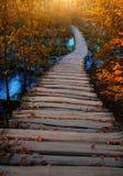Ξύλινη πορεία στο εθνικό πάρκο Plitvice της Κροατίας Στοκ Φωτογραφίες