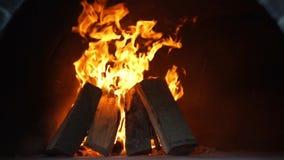 Ξύλινη πυρκαγιά στο σκοτάδι απόθεμα βίντεο