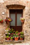 Ξύλινη πόρτα που περιβάλλεται από τα ζωηρόχρωμα λουλούδια στην Τοσκάνη, Ιταλία στοκ εικόνες