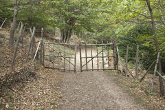 Ξύλινη πύλη στοκ φωτογραφία με δικαίωμα ελεύθερης χρήσης