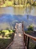 Ξύλινη σκάλα, αποβάθρα, κάθοδος στο νερό σε μια λίμνη στοκ εικόνα με δικαίωμα ελεύθερης χρήσης