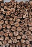 Ξύλινη σύσταση σωρών καυσόξυλου στην κατακόρυφο στοκ εικόνα με δικαίωμα ελεύθερης χρήσης