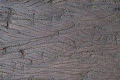 Ξύλινη σύσταση Υπόβαθρο Στοκ φωτογραφία με δικαίωμα ελεύθερης χρήσης