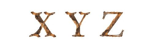 Ξύλινη σύσταση X-$L*Y Ζ αλφάβητου που απομονώνεται στο άσπρο backgroud Στοκ Εικόνες