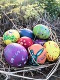 Ξύλινη φωλιά πουλιών αυγών Πάσχας Στοκ Εικόνες