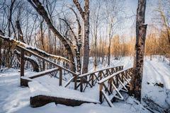 Ξύλινη χιονώδης γέφυρα στο δάσος Στοκ Φωτογραφίες