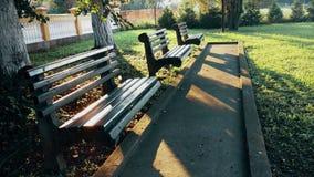 Ξύλινοι πάγκοι για το κάθισμα στο πάρκο το πρωί απόθεμα βίντεο