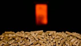 Ξύλινοι σβόλοι με την αίθουσα καύσης απόθεμα βίντεο