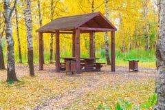Ξύλινος άξονας στο δάσος φθινοπώρου Στοκ φωτογραφίες με δικαίωμα ελεύθερης χρήσης