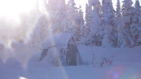 Ξύλινος κατοικήστε στο χειμερινό ξύλο την ηλιόλουστη ημέρα με τα αποτελέσματα φλογών φακών κίνηση αργή 3840x2160 απόθεμα βίντεο