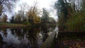 Ξύλινος μικρός λιμένας με τον ποταμό απόθεμα βίντεο