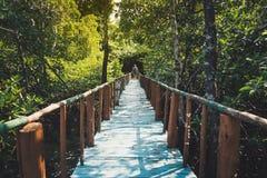 Ξύλινος μόλυβδος γεφυρών στη ζούγκλα στην Ταϊλάνδη κάτω από το μπλε ουρανό Στοκ εικόνα με δικαίωμα ελεύθερης χρήσης