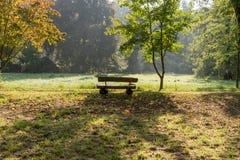 Ξύλινος πάγκος στο πάρκο φθινοπώρου Στοκ Φωτογραφία