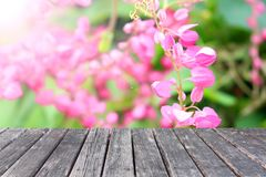 Ξύλινος πίνακας στα λουλούδια Antigonon Leptopus Στοκ Εικόνα