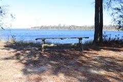 Ξύλινος πίνακας στο πάρκο κοντά στο νερό στοκ φωτογραφία με δικαίωμα ελεύθερης χρήσης