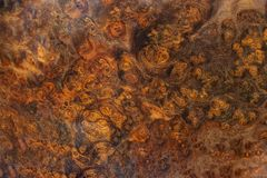 Ξύλινος ριγωτός Afzelia burl για το εσωτερικό αυτοκίνητο διακοσμήσεων τυπωμένων υλών εικόνων, εξωτικό ξύλινο όμορφο σχέδιο για τι στοκ φωτογραφία με δικαίωμα ελεύθερης χρήσης