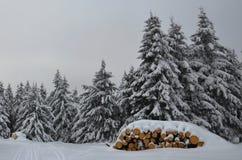 Ξύλινος σωρός με το χιόνι Στοκ Εικόνες