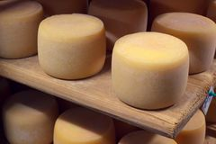 Ξύλινος τοποθετήστε σε ράφι με τη φυσική γαλακτοκομική γήρανση τυριών Στοκ εικόνα με δικαίωμα ελεύθερης χρήσης