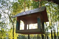 Ξύλινος τροφοδότης πουλιών σε έναν κλάδο δέντρων σε ένα φυσικό πάρκο στον ήλιο πρωινού στοκ φωτογραφίες