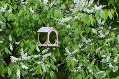 Ξύλινος τροφοδότης πουλιών στοκ φωτογραφία