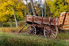 Ξύλινο βαγόνι εμπορευμάτων με Aspens Στοκ Φωτογραφίες