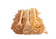 Ξύλινο κουτάλι με το σιτάρι στοκ φωτογραφία με δικαίωμα ελεύθερης χρήσης