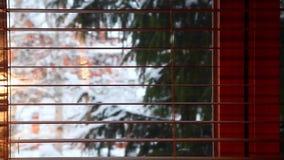 Ξύλινο μήκος σε πόδηα τυφλών χειμερινών παραθύρων hd φιλμ μικρού μήκους