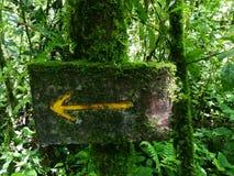 Ξύλινο σήμα με το βρύο Ecoturismo, οικοτουρισμός στη Κόστα Ρίκα στοκ εικόνα με δικαίωμα ελεύθερης χρήσης