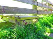 Ξύλινο σκαλί στο ολλανδικό ψαροχώρι στοκ φωτογραφίες με δικαίωμα ελεύθερης χρήσης