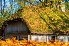 Ξύλινο σπίτι στο πάρκο Στοκ Φωτογραφία