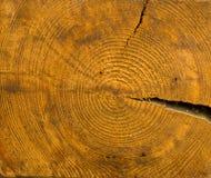 Ξύλινο σχέδιο από το πραγματικό ξύλο Στοκ Εικόνα