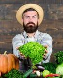 Ξύλινο υπόβαθρο λαχανικών λαβής αγροτών ατόμων ώριμο γενειοφόρο Πωλήστε τα λαχανικά τοπική αγορά Παραγόμενη στην ίδια περιοχή ένν στοκ φωτογραφίες