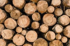 Ξύλινο υπόβαθρο σωρών κούτσουρων για τη βιομηχανία ξυλείας στοκ φωτογραφία