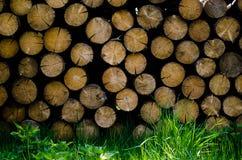 Ξύλινο υπόβαθρο φραγμών στοκ εικόνες με δικαίωμα ελεύθερης χρήσης