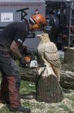 Ξύλινο χαράζοντας ξύλινο γλυπτό αλυσιδοπριόνων ενός αετού Στοκ Φωτογραφία
