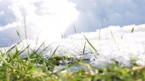 Ξύπνημα φύσης μετά από το χειμώνα απόθεμα βίντεο
