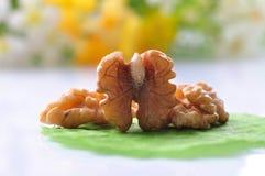 Ξύλα καρυδιάς--ένα είδος δημοφιλών καρυδιών στον κόσμο Στοκ εικόνα με δικαίωμα ελεύθερης χρήσης