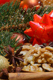 Ξύλα καρυδιάς και γλυκάνισο αστεριών Στοκ Εικόνες