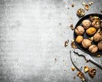 Ξύλα καρυδιάς στο κύπελλο με τον καρυοθραύστης Στοκ Εικόνες
