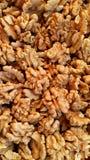 Ξύλα καρυδιάς - τρόφιμα εγκεφάλου Στοκ Εικόνα