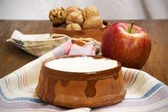 Ξύλα καρυδιάς, Apple και γιαούρτι Στοκ Εικόνες