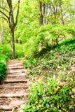 Ξύλινα βήματα μέσω του πράσινου πάρκου σε Keukenhof, οι Κάτω Χώρες δ Στοκ φωτογραφία με δικαίωμα ελεύθερης χρήσης