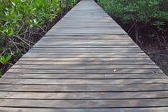 Ξύλινα γέφυρες και δάση Στοκ Εικόνα