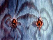 Ξύλινα μάτια κόμβων Στοκ Εικόνες