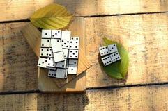 Ξύλινα ντόμινο καθορισμένα Στοκ Φωτογραφία