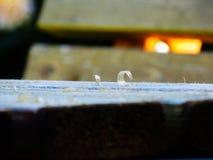 Ξύλινα ξέσματα σε έναν παλαιό πάγκο Στοκ εικόνες με δικαίωμα ελεύθερης χρήσης