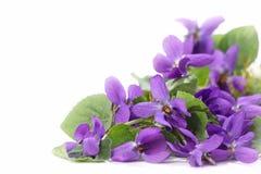 Ξύλινα λουλούδια βιολέτων Στοκ Εικόνες