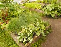 Ξύλινα πλαίσια κήπων Στοκ Εικόνα